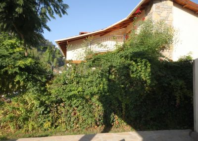 Villa Dalyan Diamond greenwall